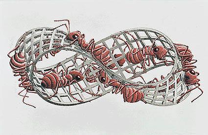 Escher - tekening van de Möbiusband