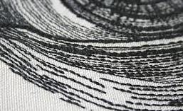 Vergroot detail van een afbeelding in modern Chinees haarborduurwerk.