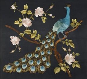Peacocks & Pomegranates