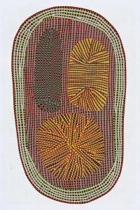 Amoeba van Studio Bertjan Pot, 2015, 393 x 252 cm - foto Moooi Carpets.